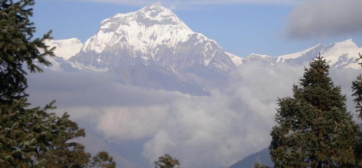 Гималайская Стато-Динамическая йога